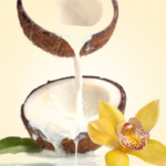 Vanilla & Coconut Mobile Massage Spa Package